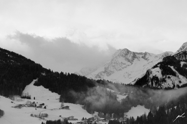 black and white, nature, cold, winter, snow, aps